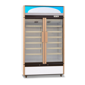 Pharmaceutical Grade Pharmacy Labcold Fridge For Sale
